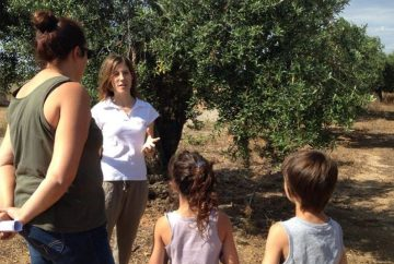 Family tour - Olive tree to bottle - Mari Carmen Granados