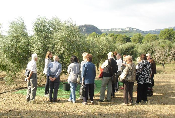 Olive tour - Living on the land - Mari Carmen Granados