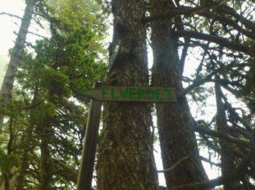 Pedraforca Experience pel Verdet
