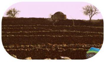 Ruta circular - Arquitectura piedra en seco