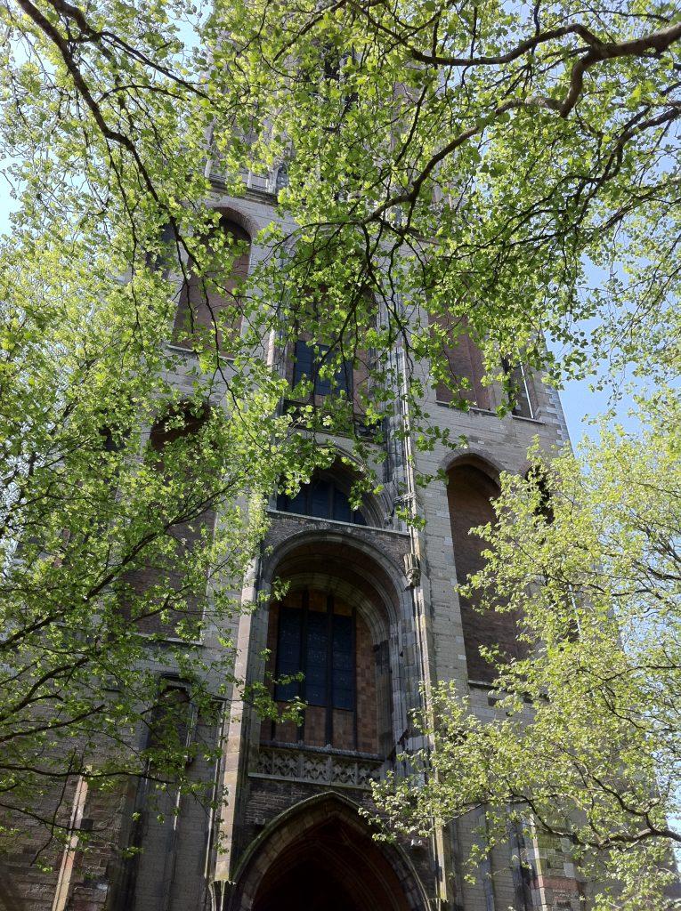 Visita guiada a Utrecht Holanda