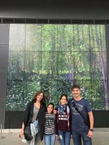 Visita guiada al Museu Van Gogh a Amsterdam